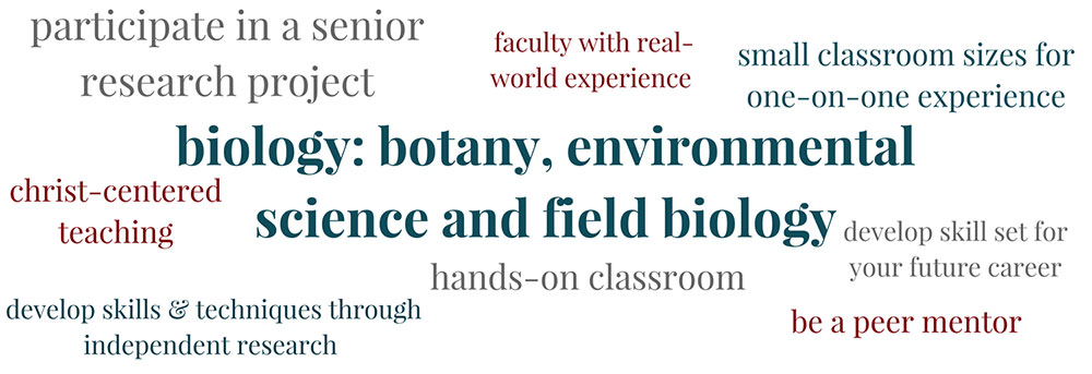 Learn about Biology: Botany at PBAU