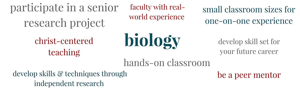 Learn about Biology at PBAU