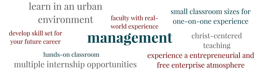 Learn about Management at PBAU